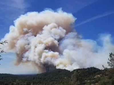 Shasta Mountain Fire